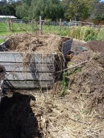 Recipe: Biodynamic Compost