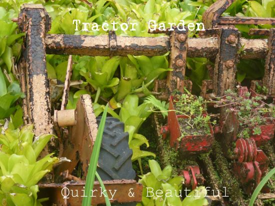 Tractor Garden
